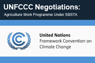 UNFCCC Negotiations