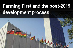 Farming First and the post-2015 development process