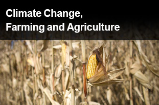 Climate Change, Farming and Agriculture