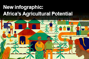 New infographic: Africa's Agricultural Potential