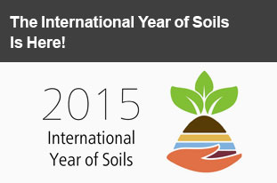 The International Year of Soils Is Here!