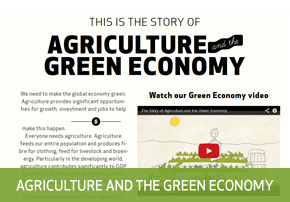 green-economy-button