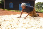 Philomene Nyirahirwa, a Rwandan farmer, dries maize in preparation for storage.