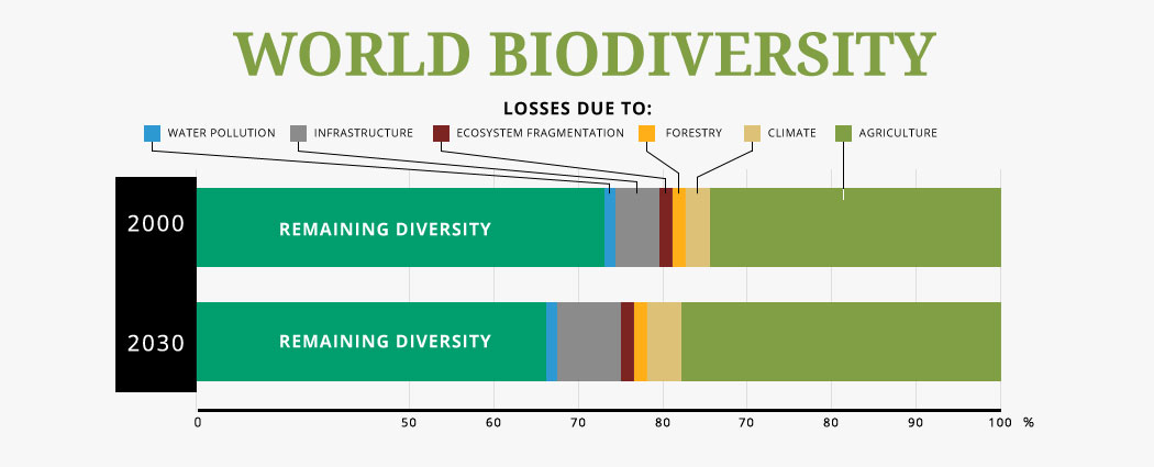 the biodiversity seen in 2000 may be lost by the year 2030, resulting  from land lost to infrastructure as well as from agriculture and climate  impacts