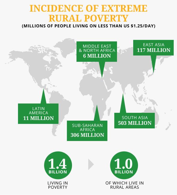 Poverty Alleviation