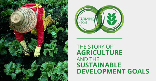 The Story of Agriculture and the Sustainable Development Goals