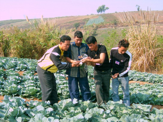 Farmers learn from each other at a field school in Thailand. Credit: Agricultural Extension in South Asia AESA