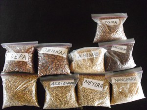 Sample types and qualities of pulses used at a training session in Ghana. Copyright: WFP