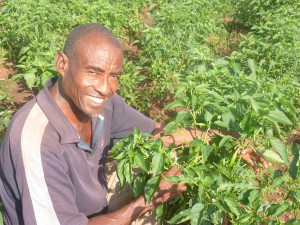 Bihon with his Pepper Crop Credit: Farm Africa