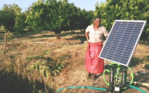 Olida in her cabbage patch setting up a solar panel