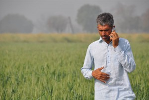 IPNI and partners helping South Asian smallholder cereal farmers reduce environmental footprint of fertilizer use Credit: International Plant Nutrition Institute