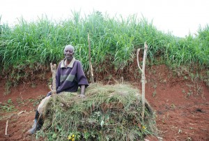 Rwandan Smallholder Ezira Ntegeyimbuga sits proudly atop his compost pile, which he learned how to make from One Acre Fund trainings