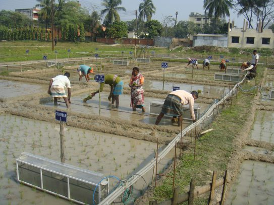 Greenhouse gas emissions labs in Bangladesh