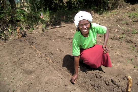 Beatrice is looking forward to growing French beans after seeing high yields for other farmers.