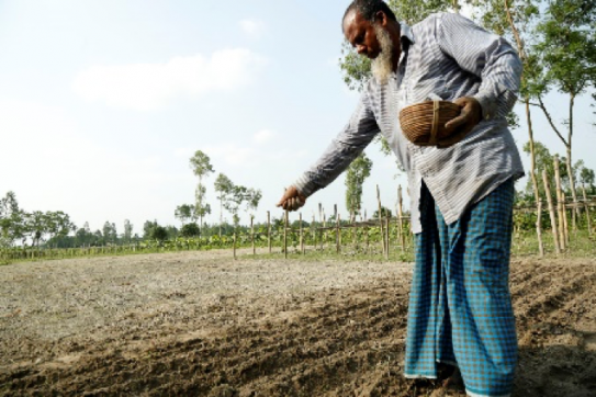 In Bangladesh, nearly half the population works in farming. Photo courtesy of VSO & Syngenta.