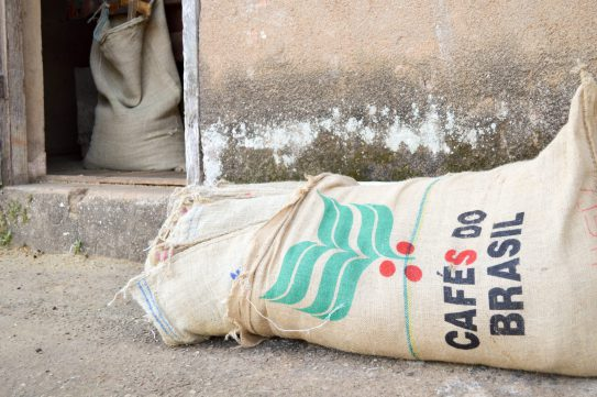 Brazil is the world's largest coffee producer (Picture: Donna Bowater)