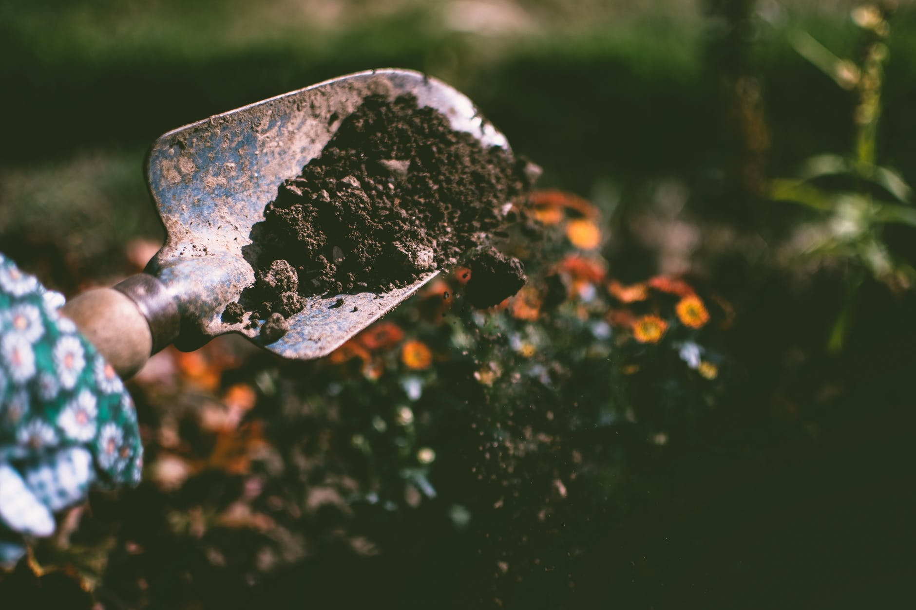 Carbon Sequestration – Gaining Ground