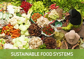 Innovations for Sustainable Food Systems
