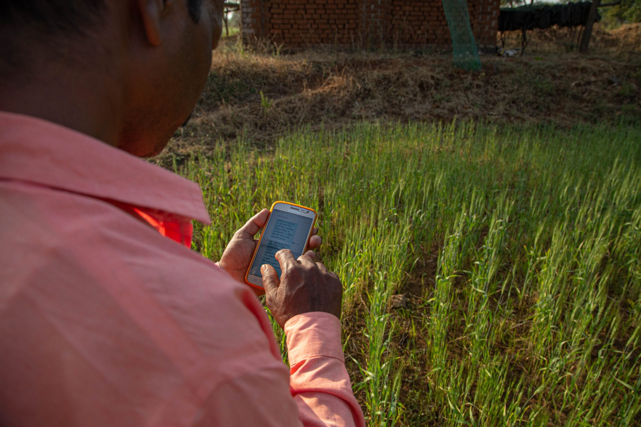 Harnessing Digital Tools for Climate and Agriculture