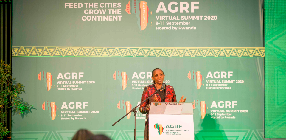 Food Systems Resilience Tops Agenda at AGRF Summit